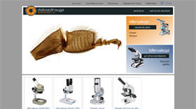 Dabas Draugs company`s project that offers microscopes for amateurs and professionals. Store with the widest choice at affordable price for those who seek to see more.
